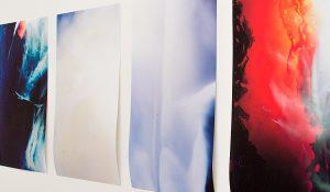 Stefanie Motta l David Petersen Gallery